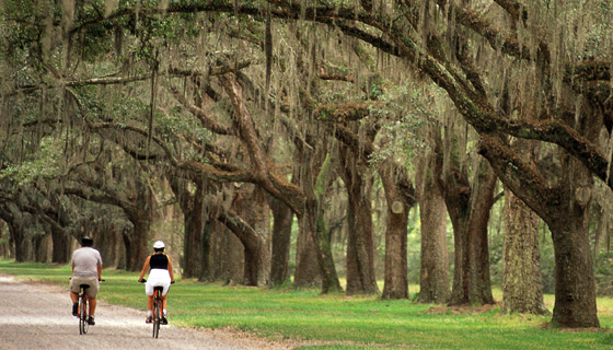 Charleston to Savannah Multisport Tour